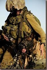IDF-7